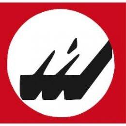 DV004-logo_Moser_270
